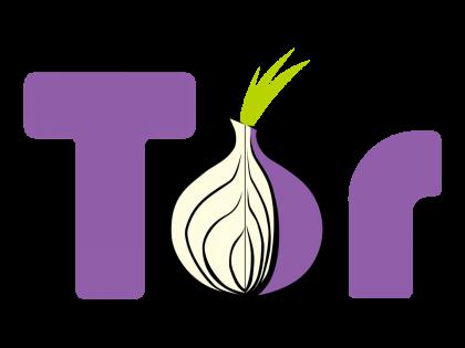 IP-adres lek in TOR Browser opgelost